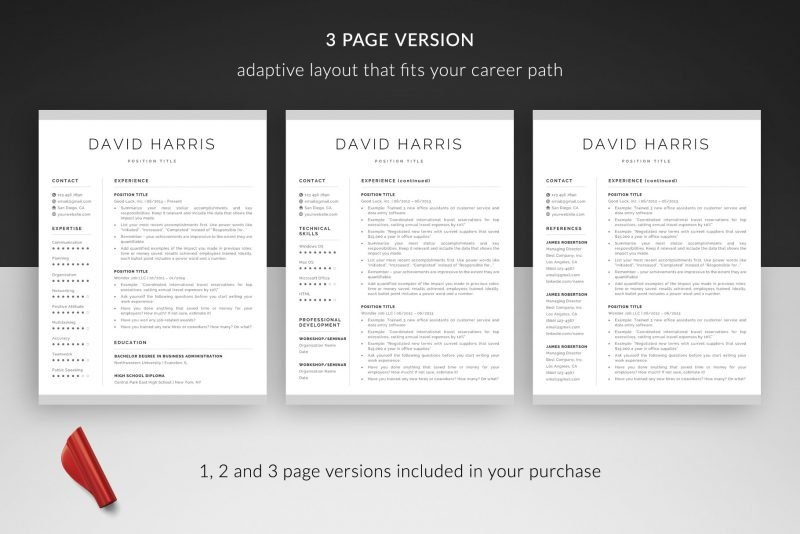 """David"" resume makeover package includes a 3-page resume template"