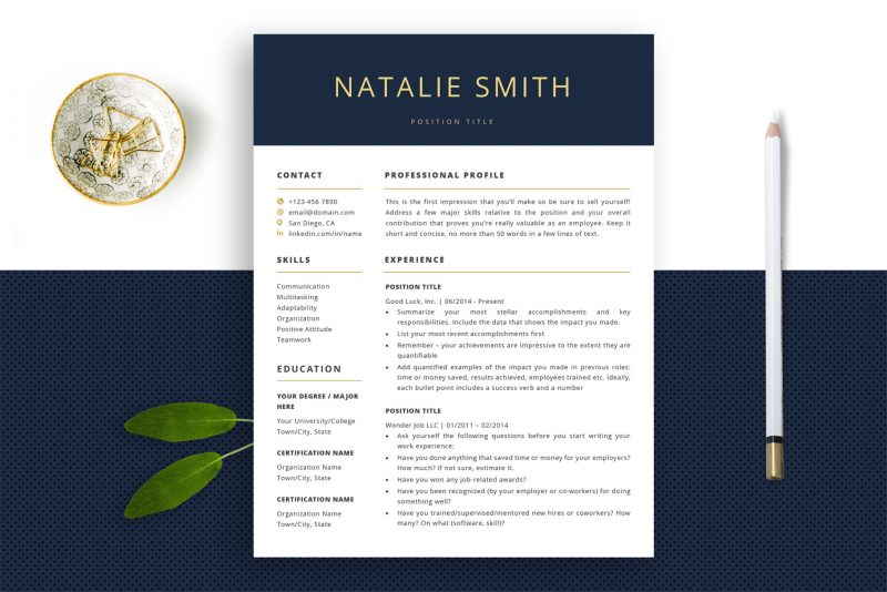 Resume templates / CV templates for Word and Pages