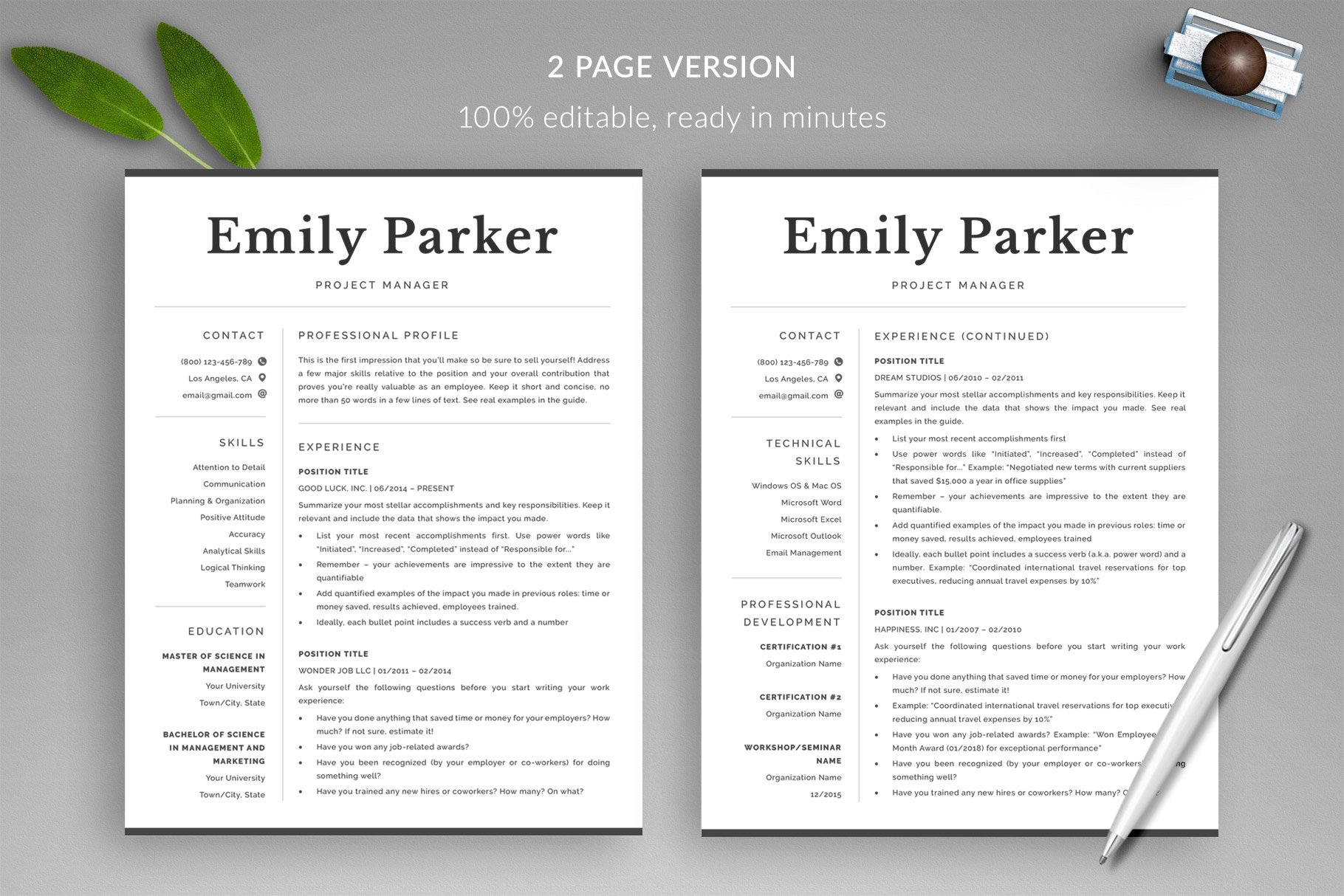 Professional Resume Template \