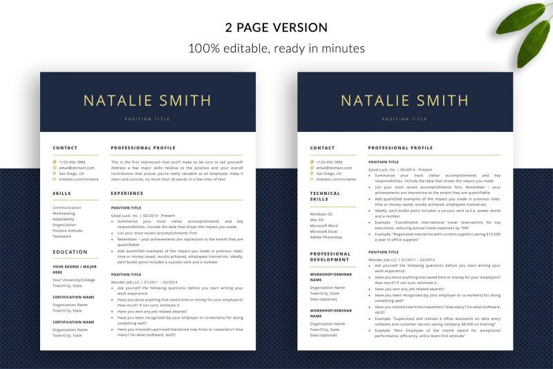 Two page resume template for Word and Pages