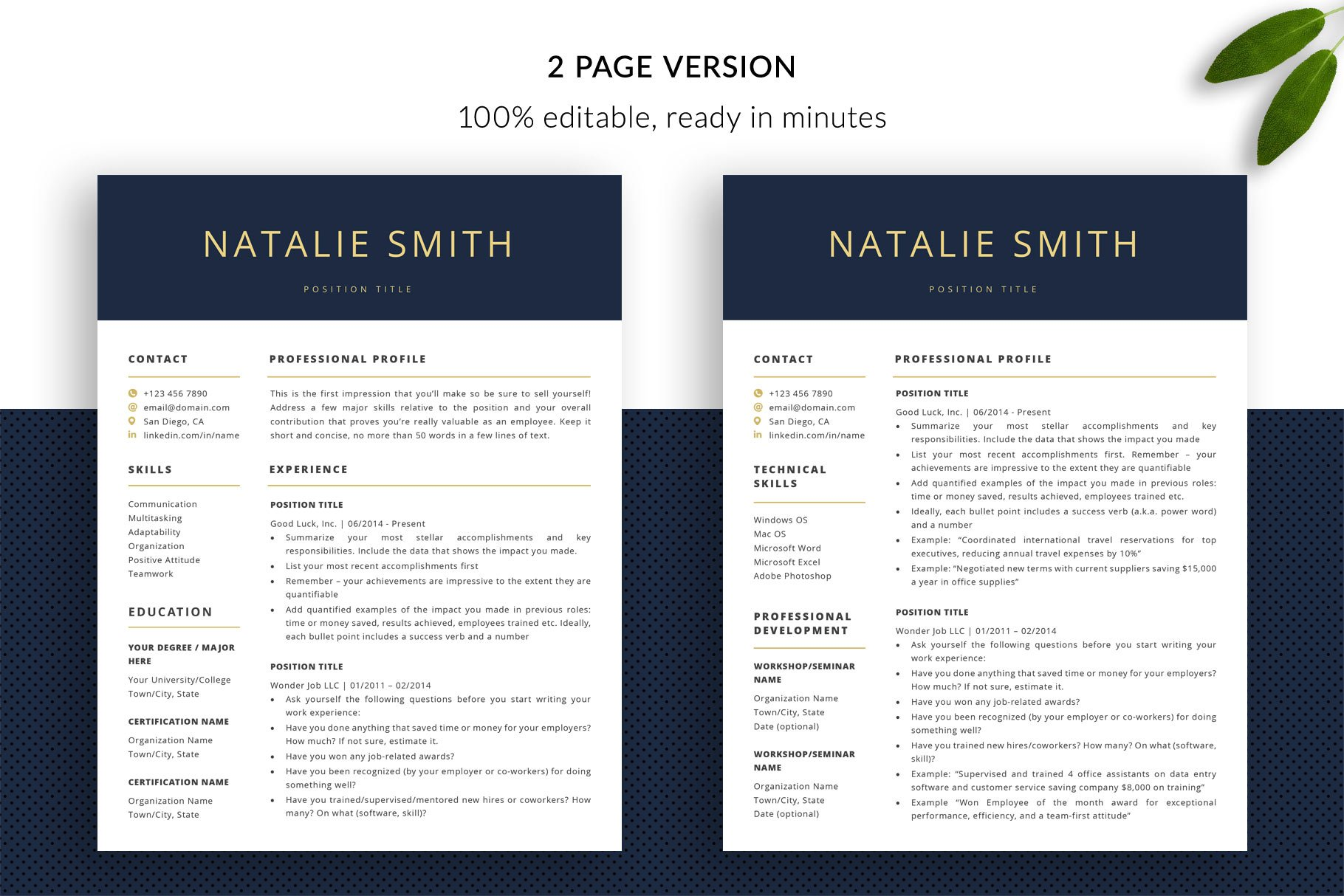 resume template package  u0026quot natalie u0026quot