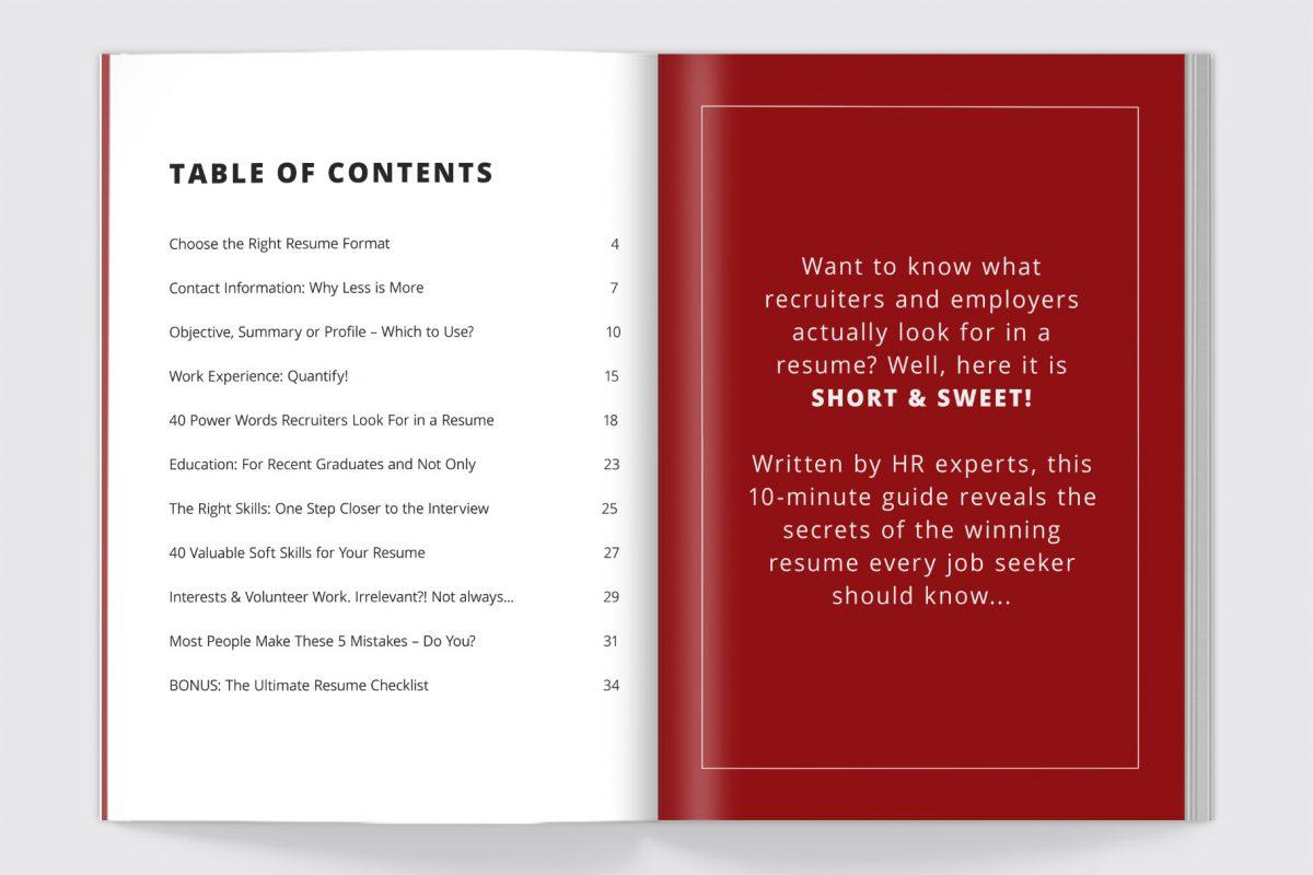 "Creative Resume Template ""Adam"" + BONUS | Resume Writing Guide Content"