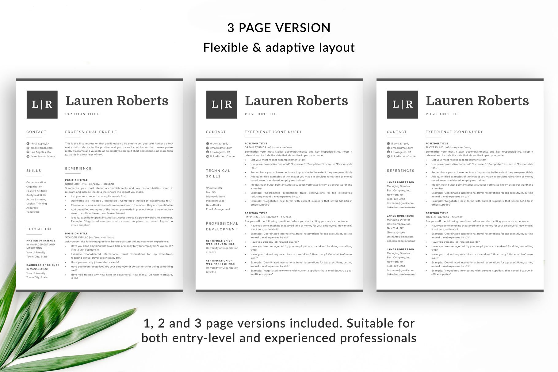 3 Page Resume.Resume Template Lauren Modern 1 2 And 3 Page Templates Bonus